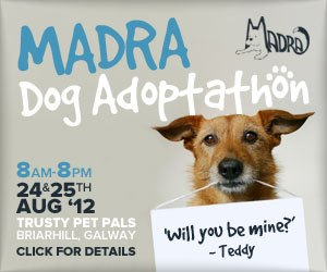 MADRA Dog Adoptathon