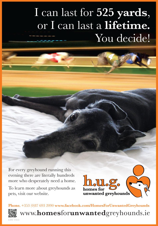 Greyhound Posters